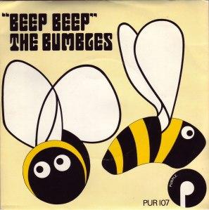 PUR107-Bumbles-front