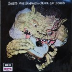 SDN-15-Black-Cat-Bones-front