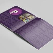 dp-book-2