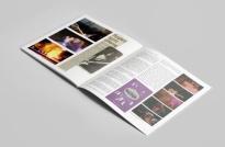 dp-book-4